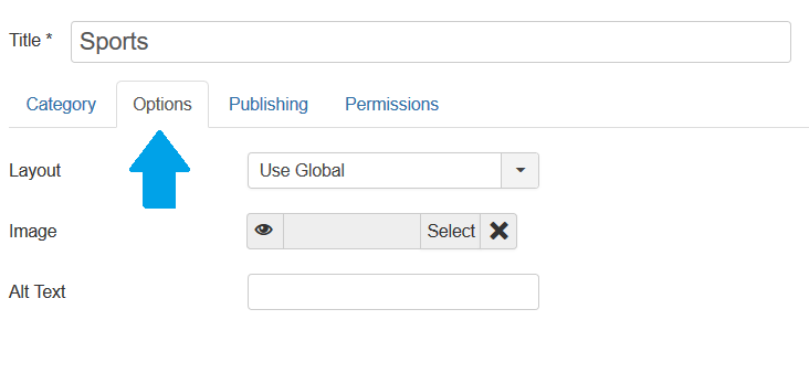 Joomla Categories Options Tab